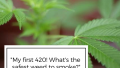"""""""My first 420! What's the safest weed to smoke?"""""""